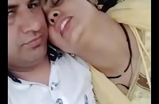 Indian Homemade Sex Punjabi Bhabhi Romance Here Car
